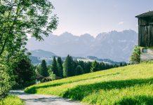 passeggiare in mezzo alla natura